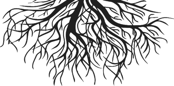 Roots_edited.png