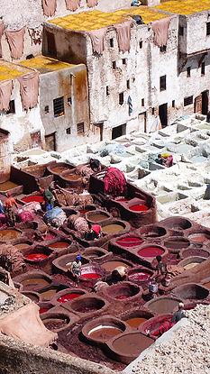Maroc_Fez_2008_Medina-123. reduite.jpg