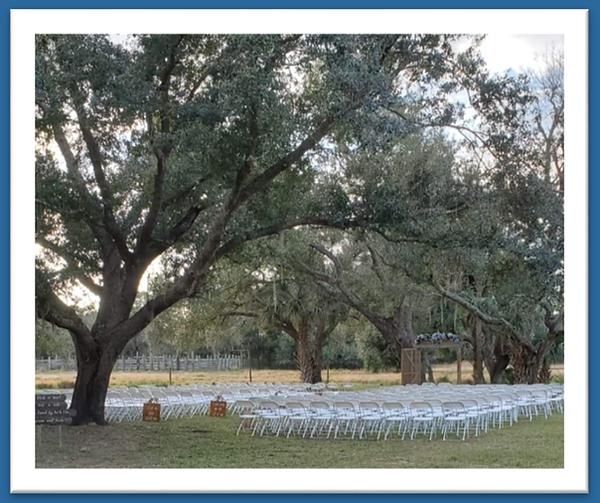 Wedding Planner North Port Florida 941-6
