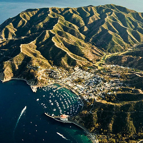Catalina Island - 7 Hr+