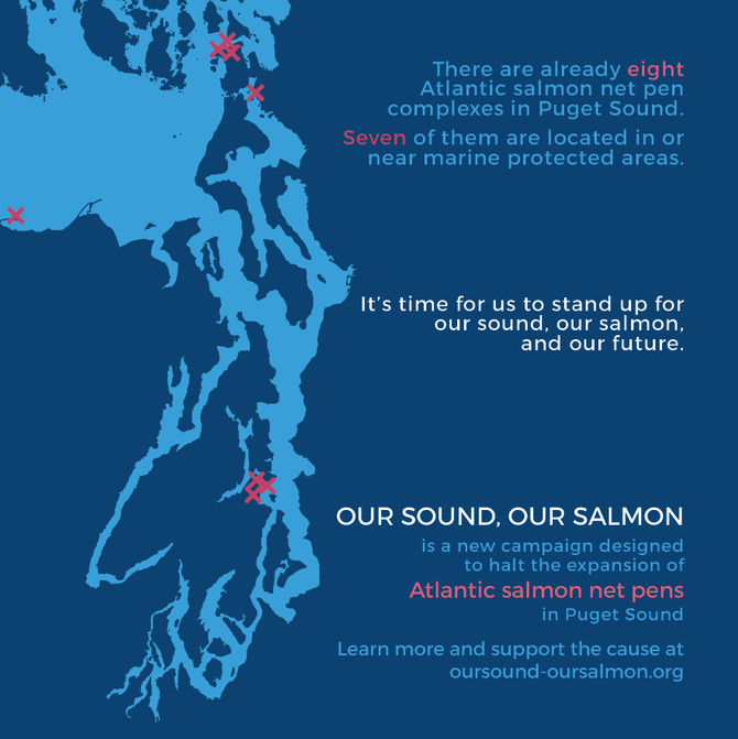 Official Launch of Our Sound, Our Salmon