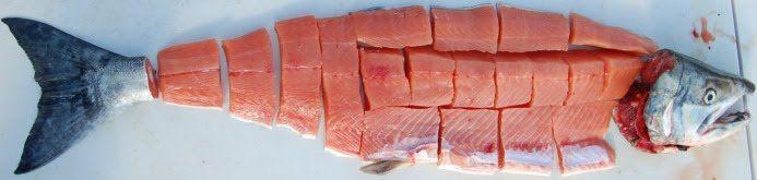 Salmon Cut up