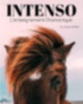 Design sans INTENSO COVER.jpg