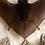 Thumbnail: Bat in Lucite Circular Lucite Shadowbox