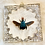 Thumbnail: Blue Bee in Lucite Shadowbox