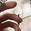 Thumbnail: Stick insect in Lucite Shadowbox