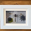 Thumbnail: Dragonfly and and dried flower in White Shadowbox