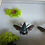 Thumbnail: Blue Bee and Yellow Bee with Dried Flowers and Acorns in White Shadowbox