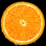 Orange_Slice_PNG_Clipart-236.png