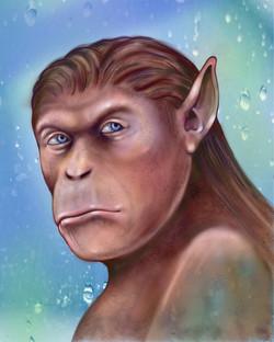 ape_by_arnold _thomas