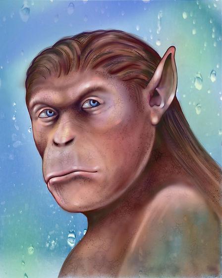 ape_by_arnold _thomas.jpg