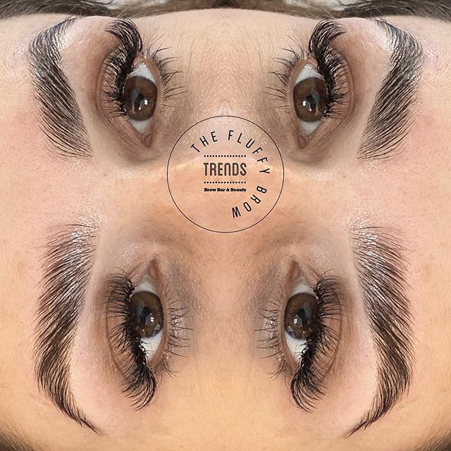 Dreamy demo brows on today's The Fluffy