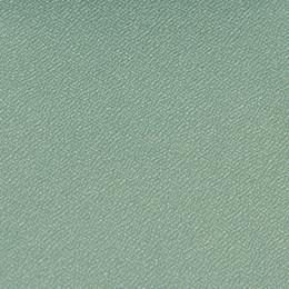 CAT-33 Lichen