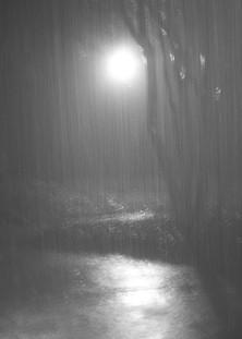 Rain On Driveway, 2015