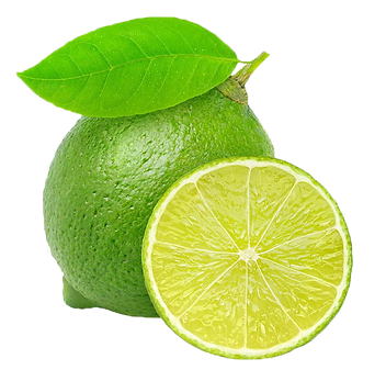 Lime 6.pngVECTOR.png