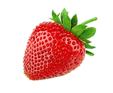 Strawberry 4.pngVECTOR.png