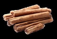 Cinnamon 4.psd VECTOR.png