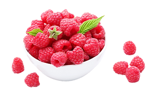 Red Raspberry 4.png VECTOR 2.png