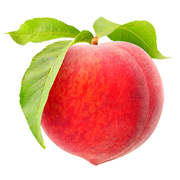 Peach 3.png VECTOR.png