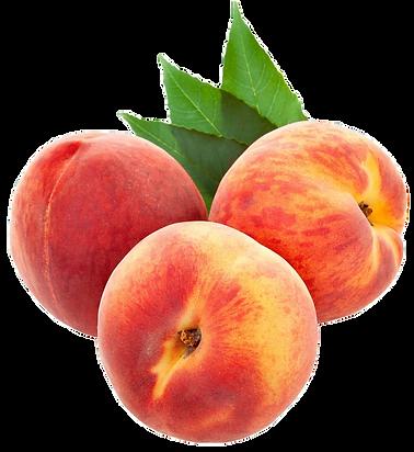 Peach 7.pngVECTOR.png