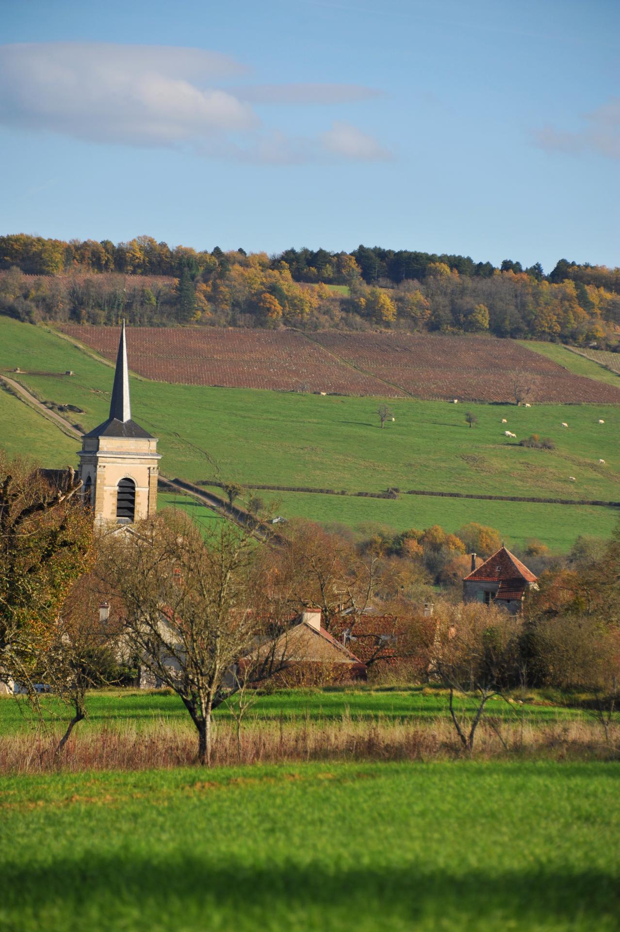 Asquins et l'église St Jacques