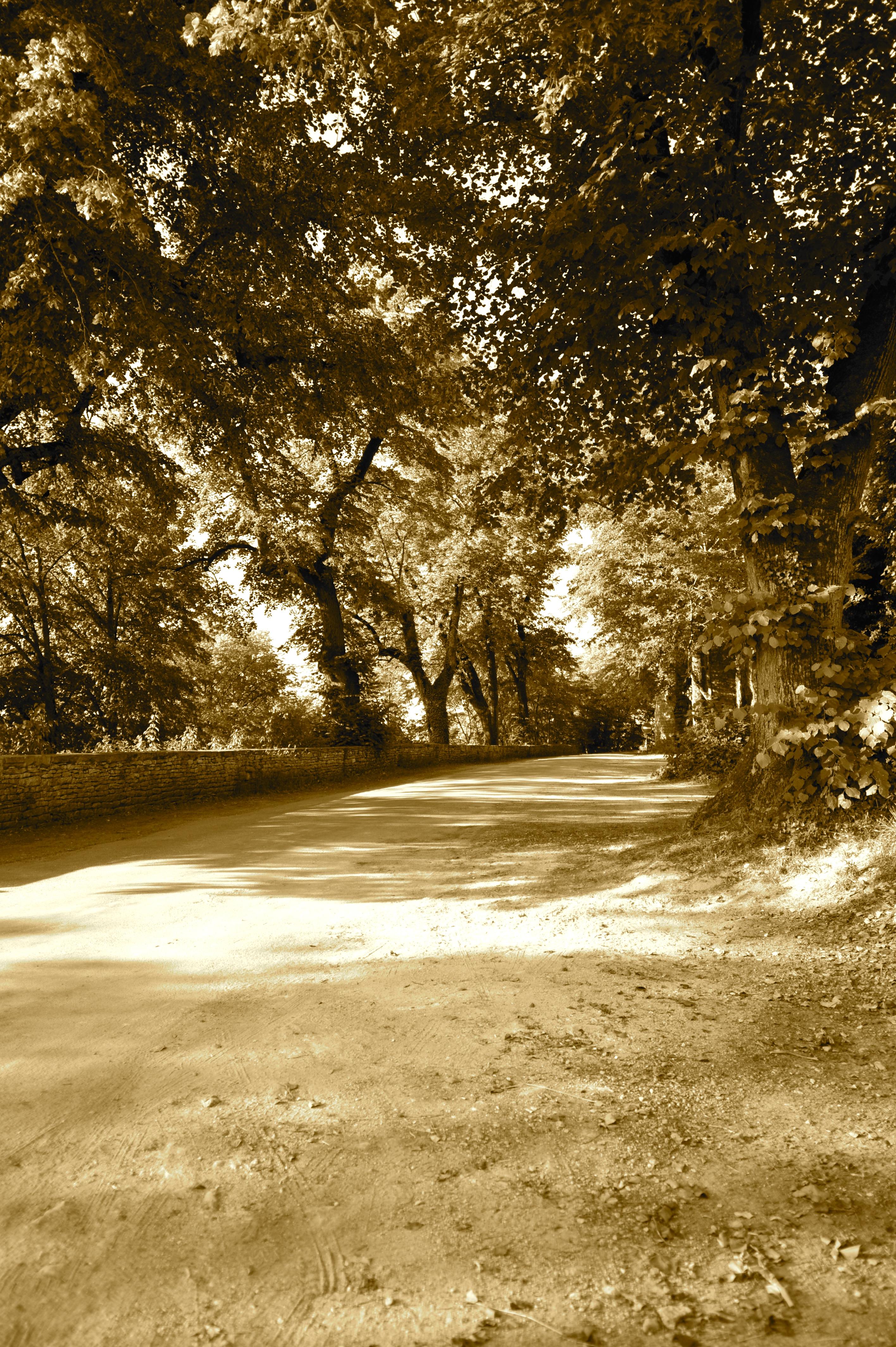 Chemin de ronde