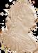 Monedas de Carlos IV
