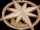 Numismatica Pecium. Numismatica Cordoba. Compra venta de monedas. Denarios, Real de a 8, Centenario, Hispano Árabe, ... Numismátca en Córdoba. Numismática en Andalucía.