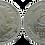 Thumbnail: 5 CTS. 1937. EBC+ (Cabeza Grande)