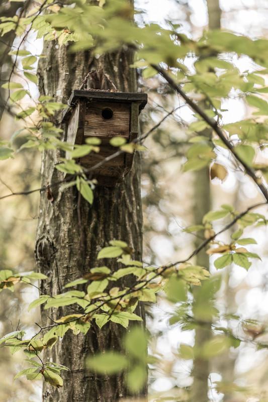 home tweet home bird houses vogelhäuschen
