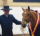 Jota CA (Remache XIII & Kioskera RAM, c. Yeguada Candas, t. Kara Pura Raza Española) & Philip Belhoussine. PRE spanska hästar