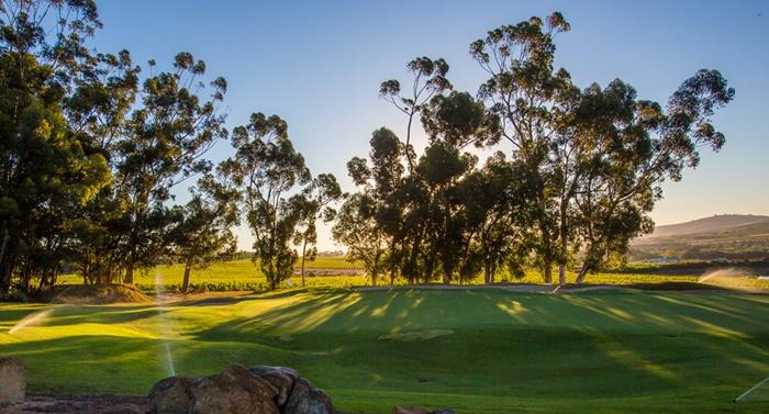 Stellenbosch-Golf-Club-03
