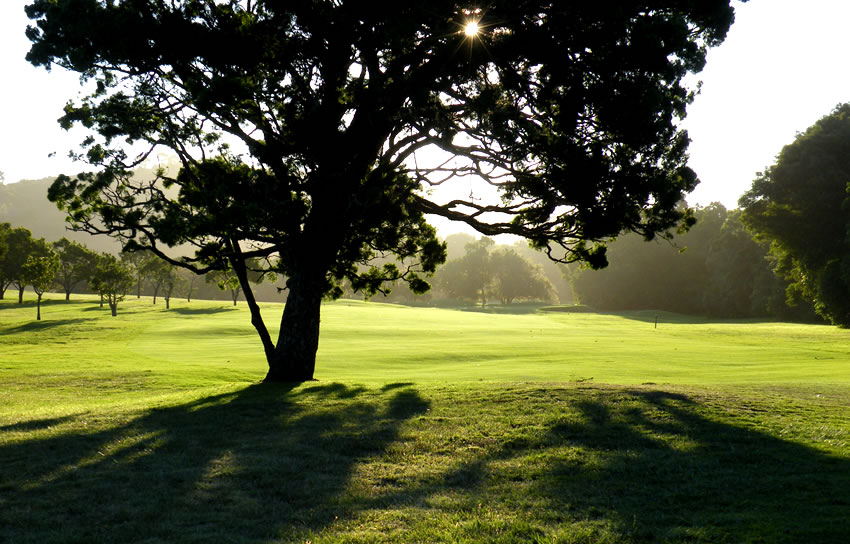 Plettenberg Bay Country Club 8