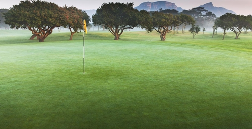 Royal Cape Golf Club 5