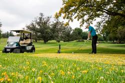 The Bryanston Golf Club 2