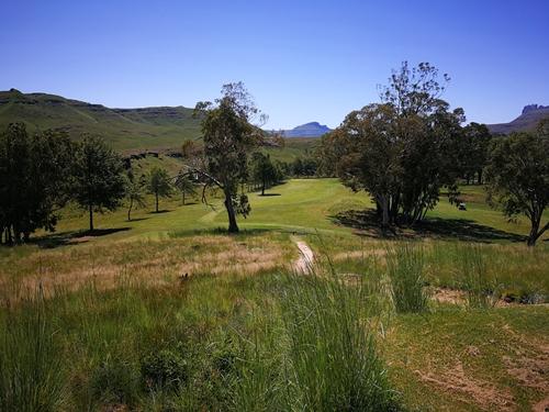 Drakensberg Gardens Golf Club Summer 8