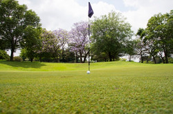 The Bryanston Golf Club 1