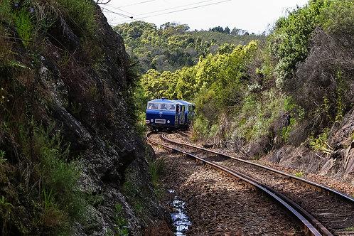 Diaz Express
