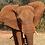Thumbnail: Elephant Sanctuary