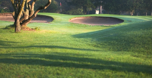 Royal Cape Golf Club 7