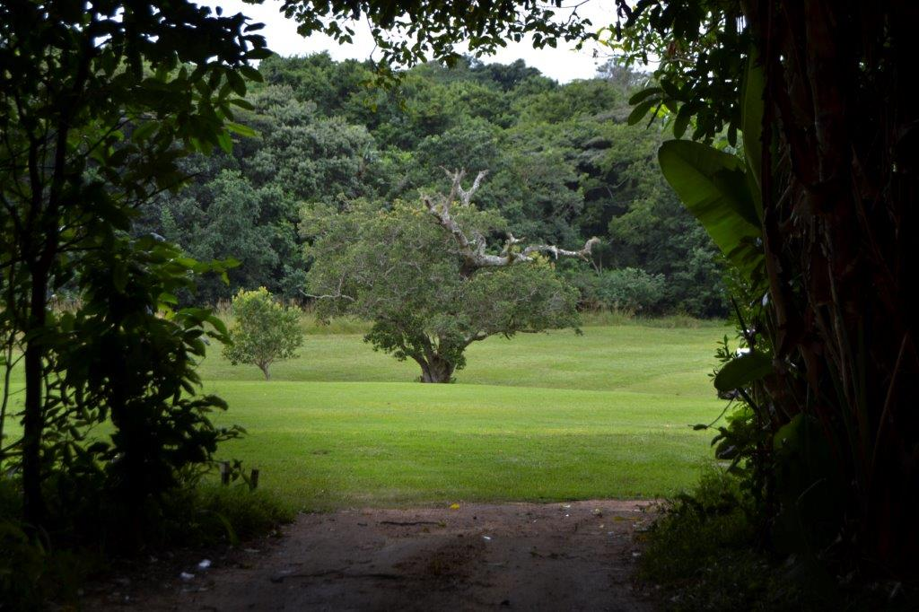 Umdoni Park Golf Club 10