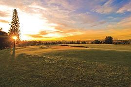 Devonvale Golf & Wine Estate 8.jpg
