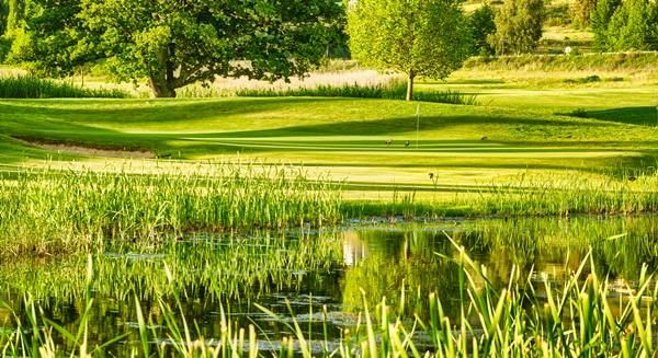 Clarens Golf Estate Summer 2 crop