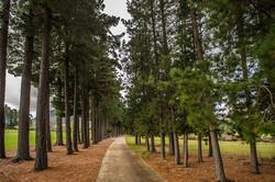 Erinvale Country & Golf Estate 6-006