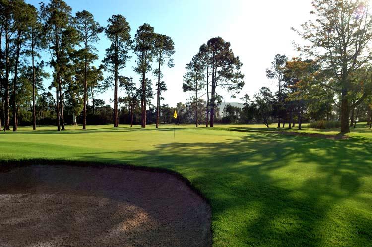 Knysna Golf Club Hole 4