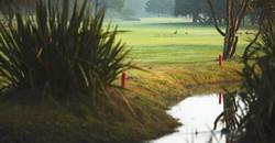 Royal Cape Golf Club 6
