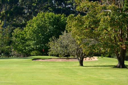 Knysna Golf Club Hole 10