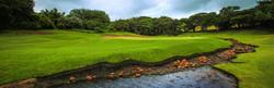 prince-grant-golf-estate-no-18-canvas