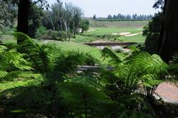 Blair Atholl Golf Estate 13