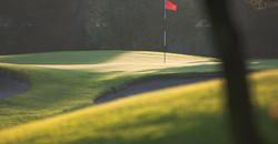 Royal Cape Golf Club 4